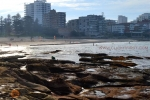 19 - Cronulla New South Wales