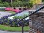 The Royal Botanic Garden Sydney : Gallery 2