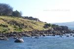 10- Victor Harbor Photo Gallery