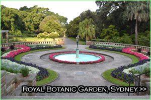 27-royal-botanicgarden-sydney