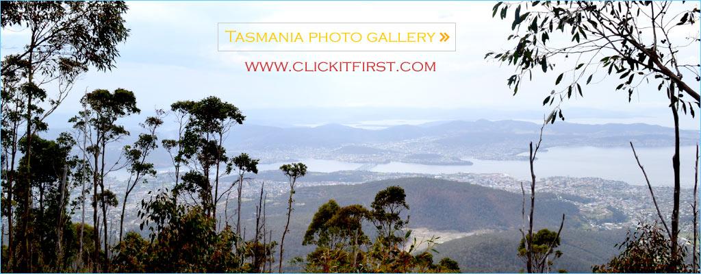 Mount Wellington Photo Gallery